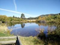 RunAndreaRun Tahoe