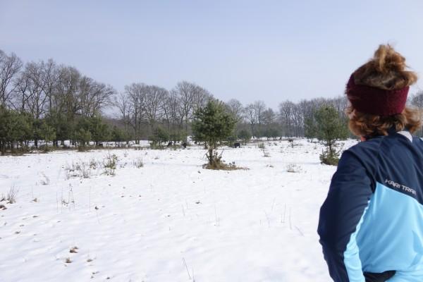 sneeuw trailrunnen